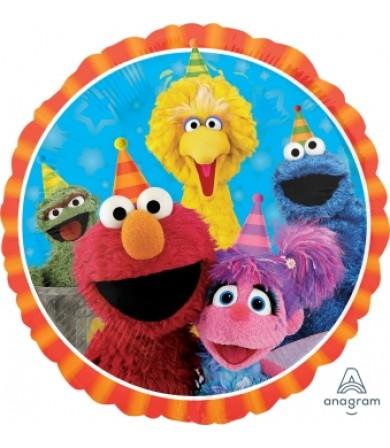 """34394 Sesame Street Fun (18"""")"""