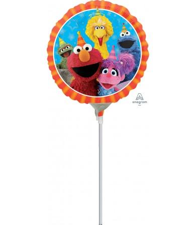 """34401 Sesame Street Fun (9"""")"""