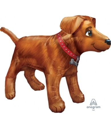 31234 Golden Dog - UltraShape