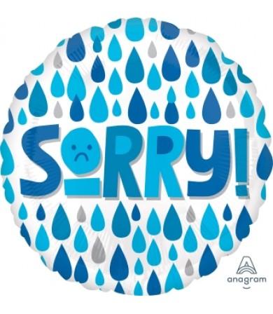 "41154 Sorry Raindrops (18"")"